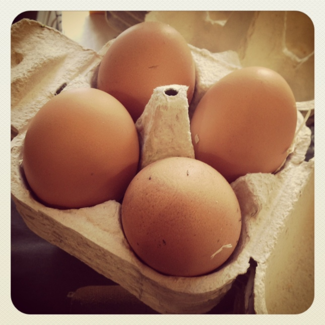 feast chickens - eggs