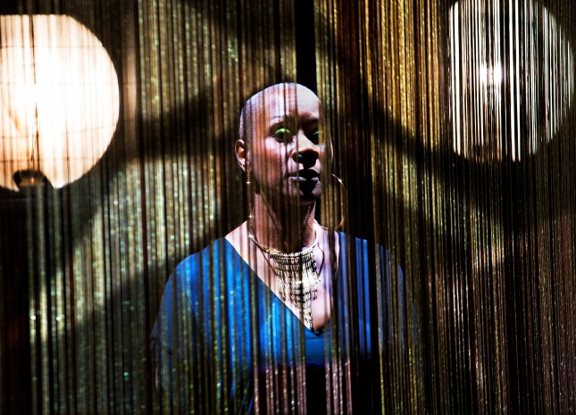 Josette Bushell-Mingo in Nina at the Young Vic. Photo by Simon Annand.jpg